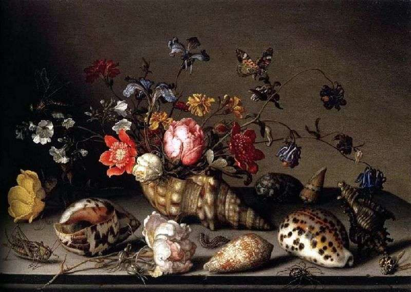 Still life: flowers, shells, and insects by Baltazar van der Ast