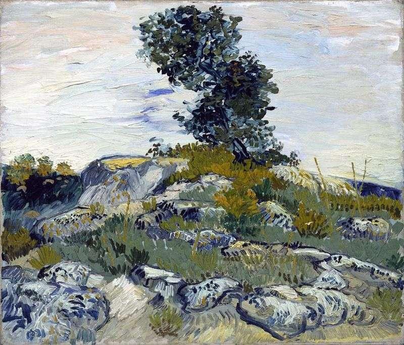 Boulders and Oak by Vincent Van Gogh
