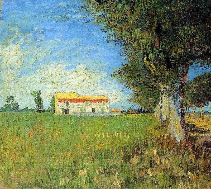 Farmhouse on a wheat field by Vincent Van Gogh