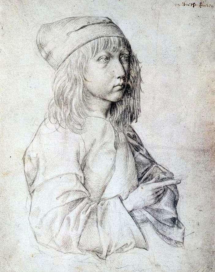 Self portrait of 1484 by Albrecht Durer