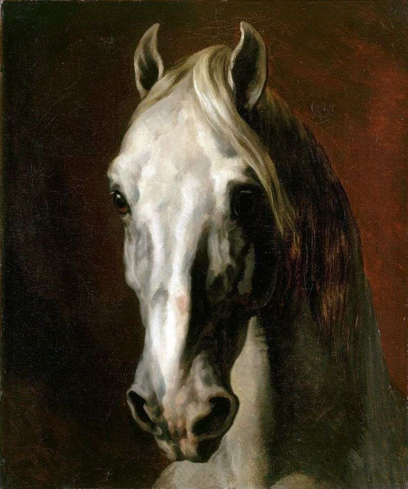 The head of a white horse by Theodore Gericault