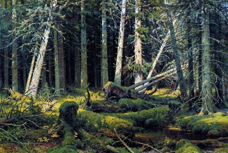 Burelom (Vologda Forest). Trees felled by the wind by Ivan Shishkin