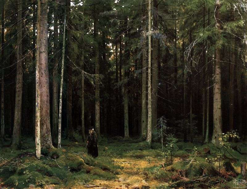In the forest of Countess Mordvinova. Peterhof by Ivan Shishkin
