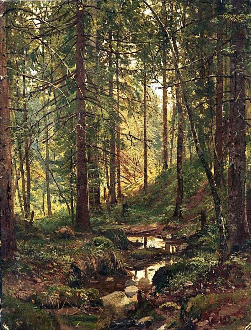 Stream in the forest. Siverskaya by Ivan Shishkin