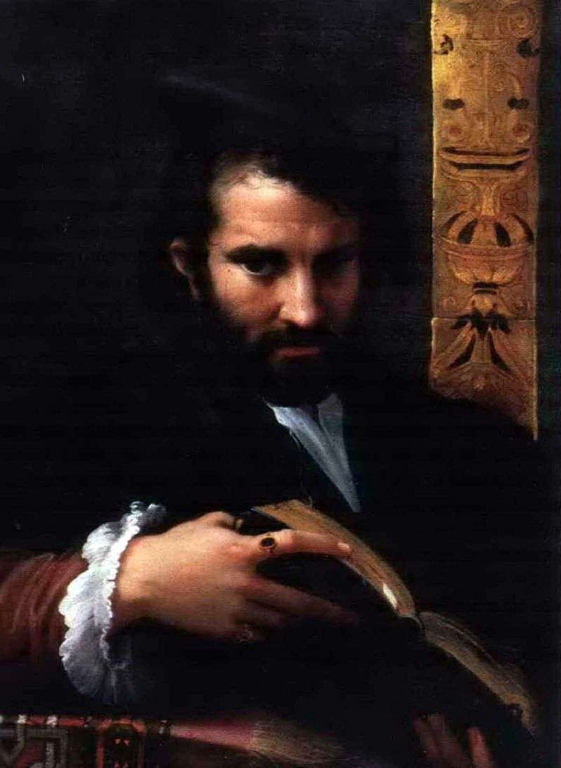 Portrait of a man with a book by Francesco Parmigianino