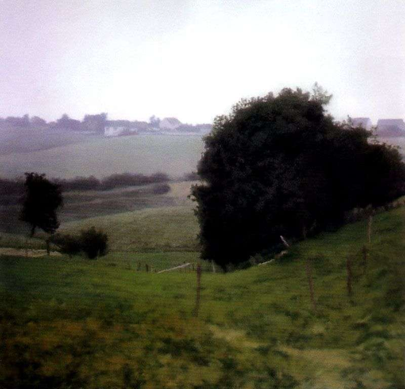 Country of Meadows by Gerhard Richter