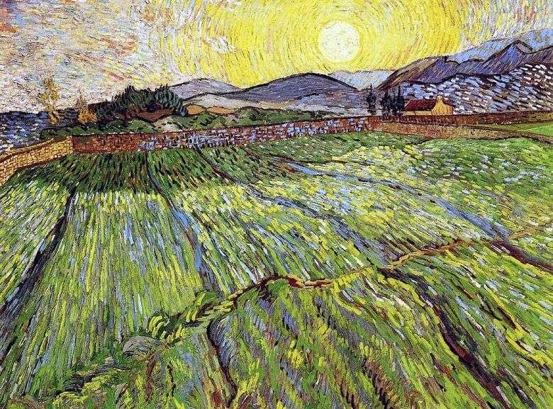 Campo arado con el sol naciente   Vincent van Gogh
