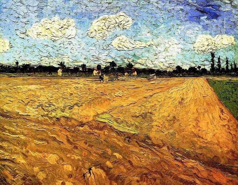 Campo arado   Vincent van Gogh