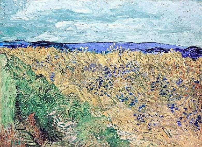 Campo de trigo con acianos   Vincent van Gogh