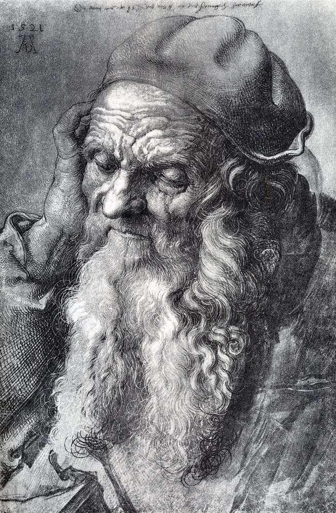 Estudio de un hombre de 93 años de edad   Albrecht Durer