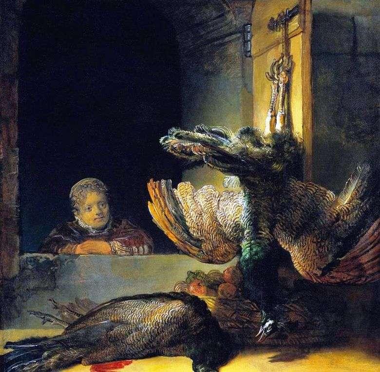 Naturaleza muerta con pavo real   Rembrandt Harmens Van Rhine