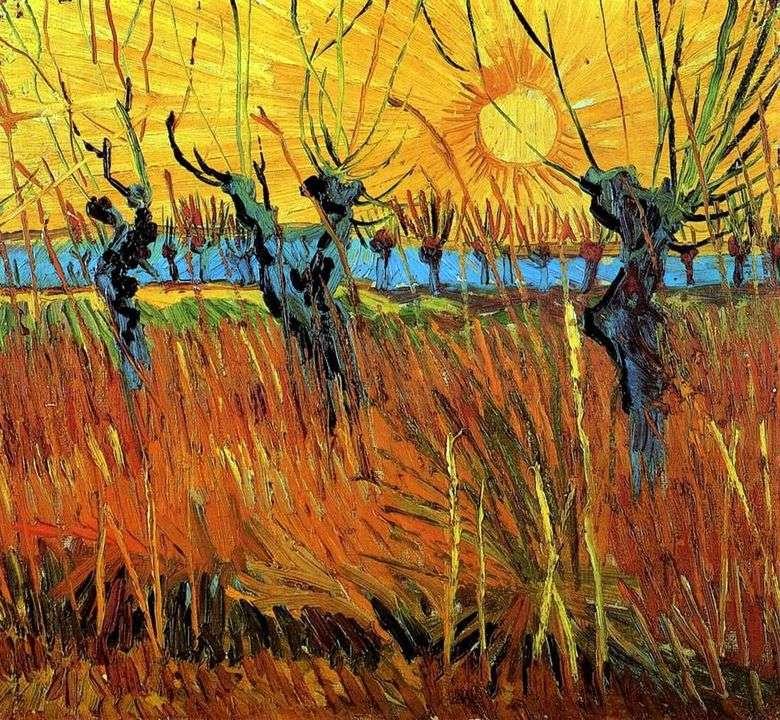 Sauces al atardecer   Vincent van Gogh